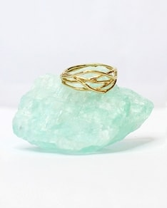 MUST HAVE series: Gold Ring Twig